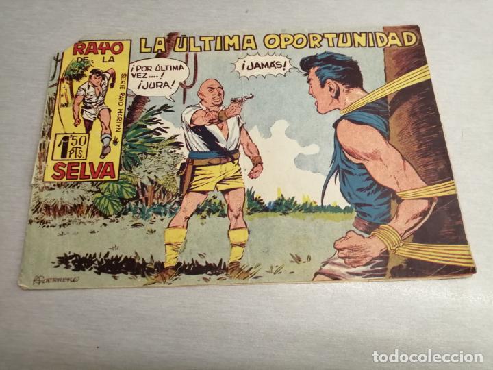 RAYO DE LA SELVA Nº 14 / MAGA ORIGINAL (Tebeos y Comics - Maga - Rayo de la Selva)