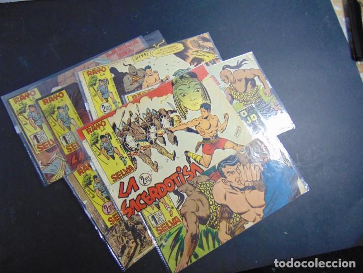LOTE 7 RAYO DE LA SELVA (PROCEDEN DE TOMO) (Tebeos y Comics - Maga - Rayo de la Selva)
