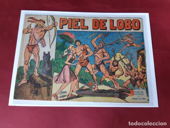 PIEL DE LOBO Nº 1 -RESERVADO A PACOMIX - (Tebeos y Comics - Maga - Piel de Lobo)