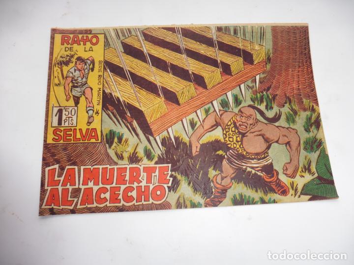 RAYO DE LA SELVA Nº34 MAGA ORIGINAL (Tebeos y Comics - Maga - Rayo de la Selva)