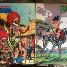 Livros de Banda Desenhada: LOTE PRIVADO 2 TEBEOS 60-65 PANTERA NEGRA. Lote 233408550