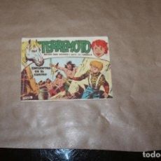 Livros de Banda Desenhada: TERREMOTO Nº 21, EDITORIAL MAGA. Lote 234530300