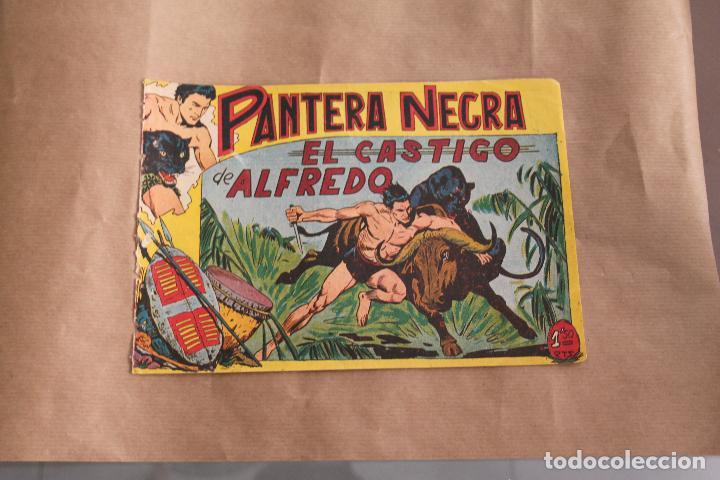 PANTERA NEGRA Nº 24, DE 1,50 PTS, EDITORIAL MAGA (Tebeos y Comics - Maga - Pantera Negra)