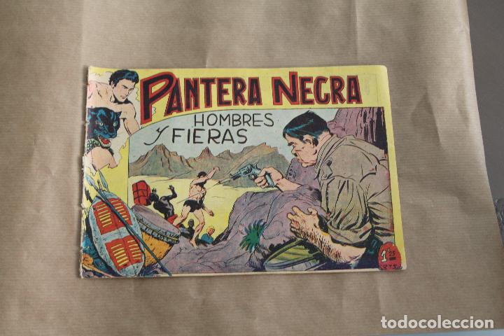 PANTERA NEGRA Nº 13, DE 1,25 PTS, EDITORIAL MAGA (Tebeos y Comics - Maga - Pantera Negra)
