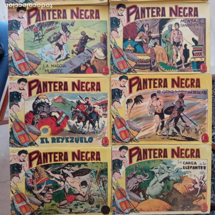 Tebeos: PANTERA NEGRA ORIGINAL COMPLETA 1,25 pts - ED. MAGA 1956 - 1 AL 54 MAGNÍFICO ESTADO, VER LAS PORTAD - Foto 5 - 236653210