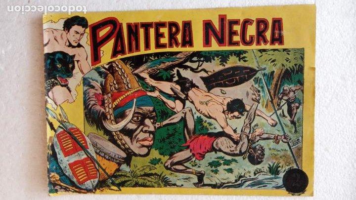 Tebeos: PANTERA NEGRA ORIGINAL COMPLETA 1,25 pts - ED. MAGA 1956 - 1 AL 54 MAGNÍFICO ESTADO, VER LAS PORTAD - Foto 20 - 236653210