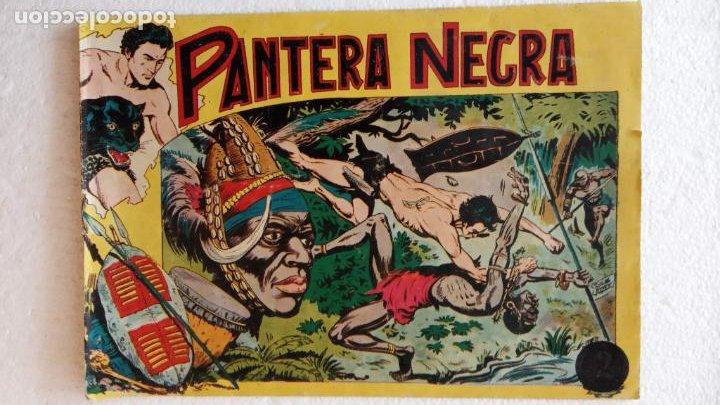 Tebeos: PANTERA NEGRA ORIGINAL COMPLETA 1,25 pts - ED. MAGA 1956 - 1 AL 54 MAGNÍFICO ESTADO, VER LAS PORTAD - Foto 21 - 236653210
