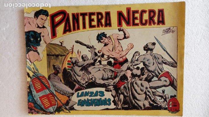 Tebeos: PANTERA NEGRA ORIGINAL COMPLETA 1,25 pts - ED. MAGA 1956 - 1 AL 54 MAGNÍFICO ESTADO, VER LAS PORTAD - Foto 22 - 236653210