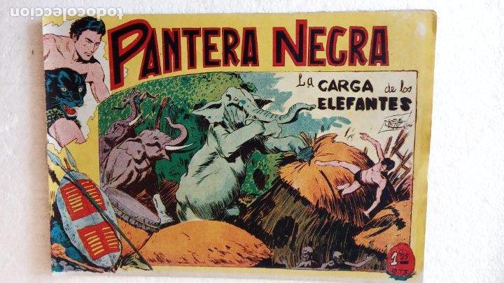 Tebeos: PANTERA NEGRA ORIGINAL COMPLETA 1,25 pts - ED. MAGA 1956 - 1 AL 54 MAGNÍFICO ESTADO, VER LAS PORTAD - Foto 27 - 236653210