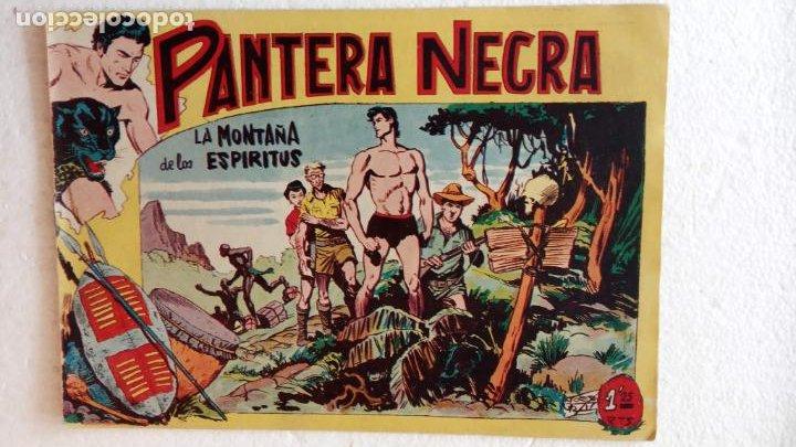 Tebeos: PANTERA NEGRA ORIGINAL COMPLETA 1,25 pts - ED. MAGA 1956 - 1 AL 54 MAGNÍFICO ESTADO, VER LAS PORTAD - Foto 29 - 236653210