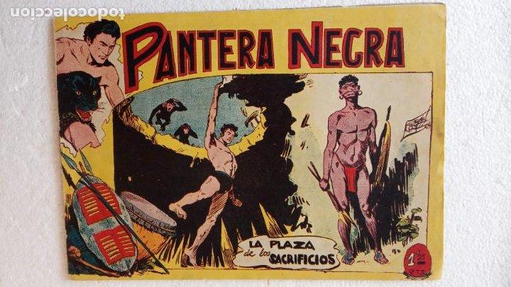 Tebeos: PANTERA NEGRA ORIGINAL COMPLETA 1,25 pts - ED. MAGA 1956 - 1 AL 54 MAGNÍFICO ESTADO, VER LAS PORTAD - Foto 30 - 236653210
