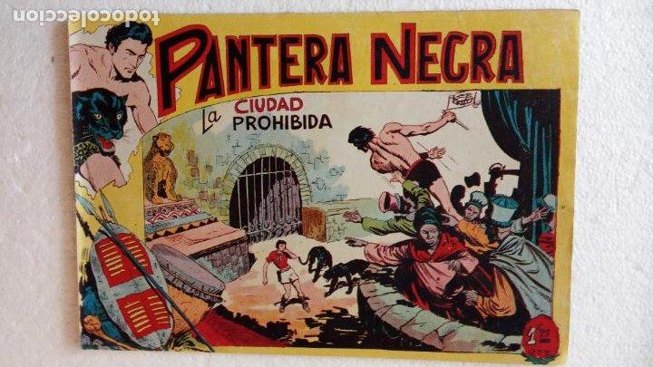 Tebeos: PANTERA NEGRA ORIGINAL COMPLETA 1,25 pts - ED. MAGA 1956 - 1 AL 54 MAGNÍFICO ESTADO, VER LAS PORTAD - Foto 32 - 236653210