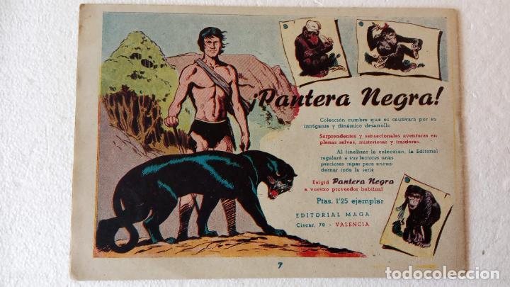 Tebeos: PANTERA NEGRA ORIGINAL COMPLETA 1,25 pts - ED. MAGA 1956 - 1 AL 54 MAGNÍFICO ESTADO, VER LAS PORTAD - Foto 33 - 236653210