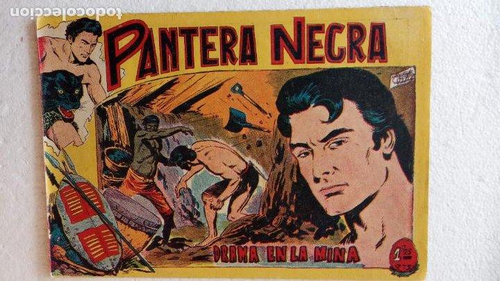 Tebeos: PANTERA NEGRA ORIGINAL COMPLETA 1,25 pts - ED. MAGA 1956 - 1 AL 54 MAGNÍFICO ESTADO, VER LAS PORTAD - Foto 36 - 236653210