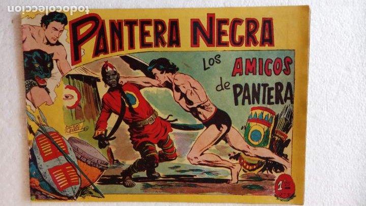 Tebeos: PANTERA NEGRA ORIGINAL COMPLETA 1,25 pts - ED. MAGA 1956 - 1 AL 54 MAGNÍFICO ESTADO, VER LAS PORTAD - Foto 37 - 236653210