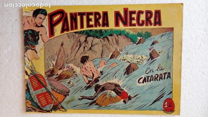 Tebeos: PANTERA NEGRA ORIGINAL COMPLETA 1,25 pts - ED. MAGA 1956 - 1 AL 54 MAGNÍFICO ESTADO, VER LAS PORTAD - Foto 46 - 236653210