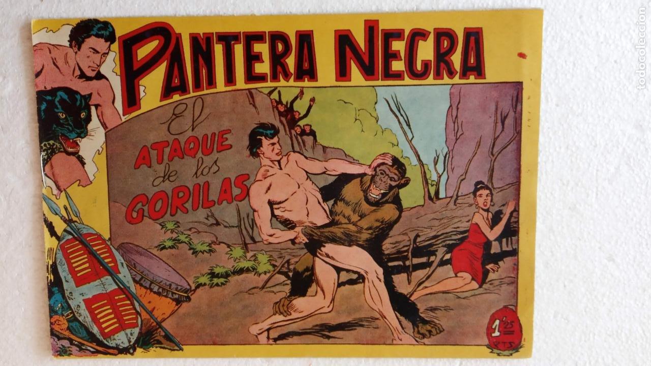 Tebeos: PANTERA NEGRA ORIGINAL COMPLETA 1,25 pts - ED. MAGA 1956 - 1 AL 54 MAGNÍFICO ESTADO, VER LAS PORTAD - Foto 50 - 236653210