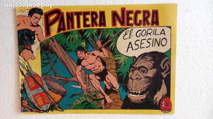 Tebeos: PANTERA NEGRA ORIGINAL COMPLETA 1,25 pts - ED. MAGA 1956 - 1 AL 54 MAGNÍFICO ESTADO, VER LAS PORTAD - Foto 51 - 236653210