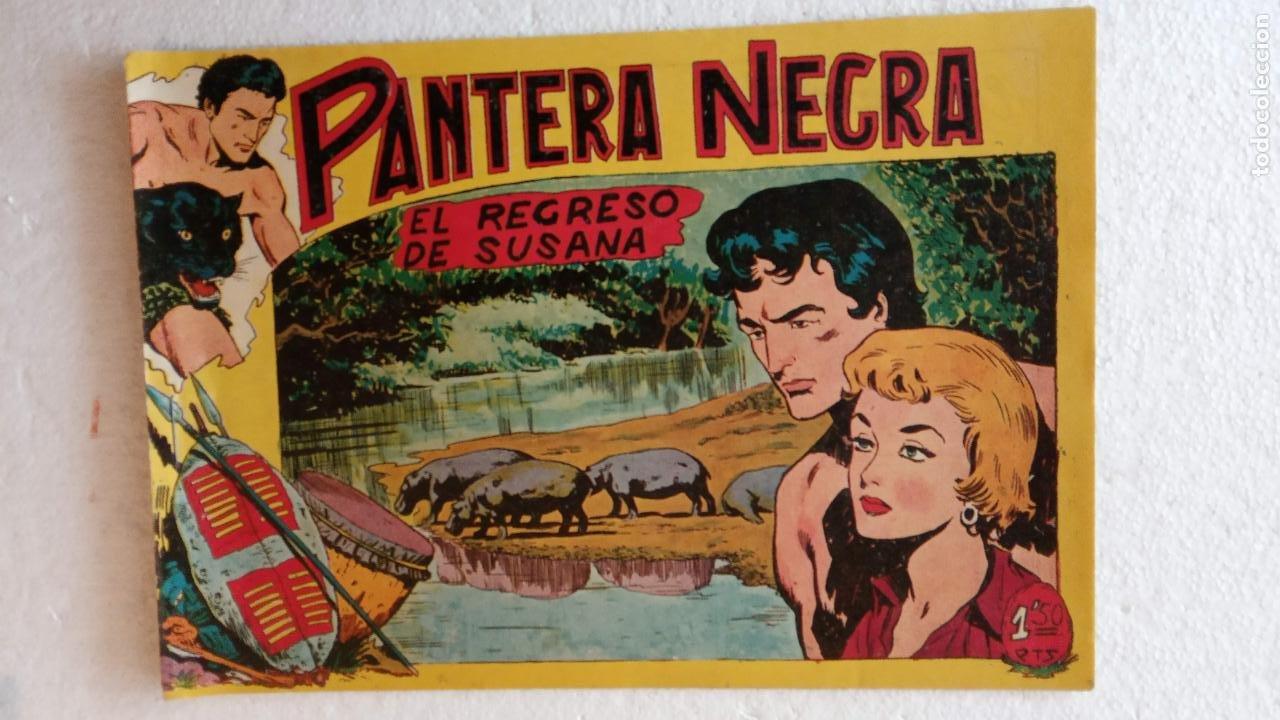 Tebeos: PANTERA NEGRA ORIGINAL COMPLETA 1,25 pts - ED. MAGA 1956 - 1 AL 54 MAGNÍFICO ESTADO, VER LAS PORTAD - Foto 57 - 236653210