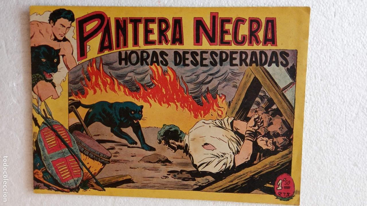 Tebeos: PANTERA NEGRA ORIGINAL COMPLETA 1,25 pts - ED. MAGA 1956 - 1 AL 54 MAGNÍFICO ESTADO, VER LAS PORTAD - Foto 63 - 236653210