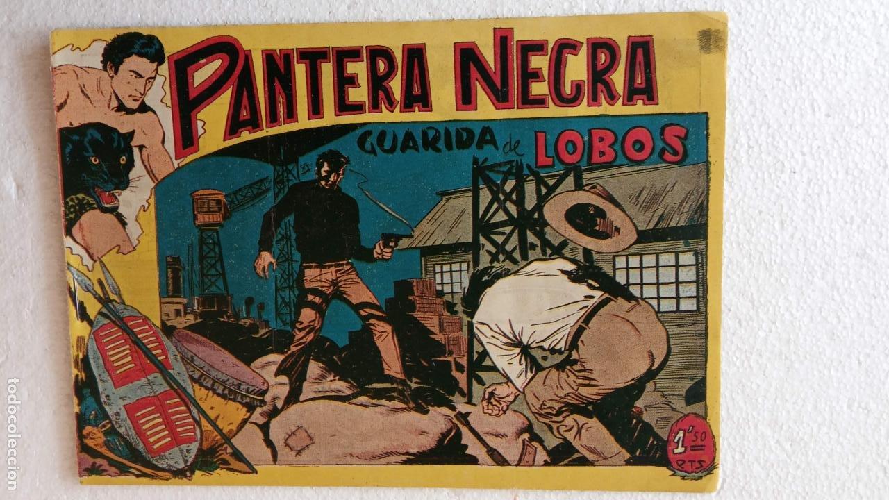 Tebeos: PANTERA NEGRA ORIGINAL COMPLETA 1,25 pts - ED. MAGA 1956 - 1 AL 54 MAGNÍFICO ESTADO, VER LAS PORTAD - Foto 66 - 236653210