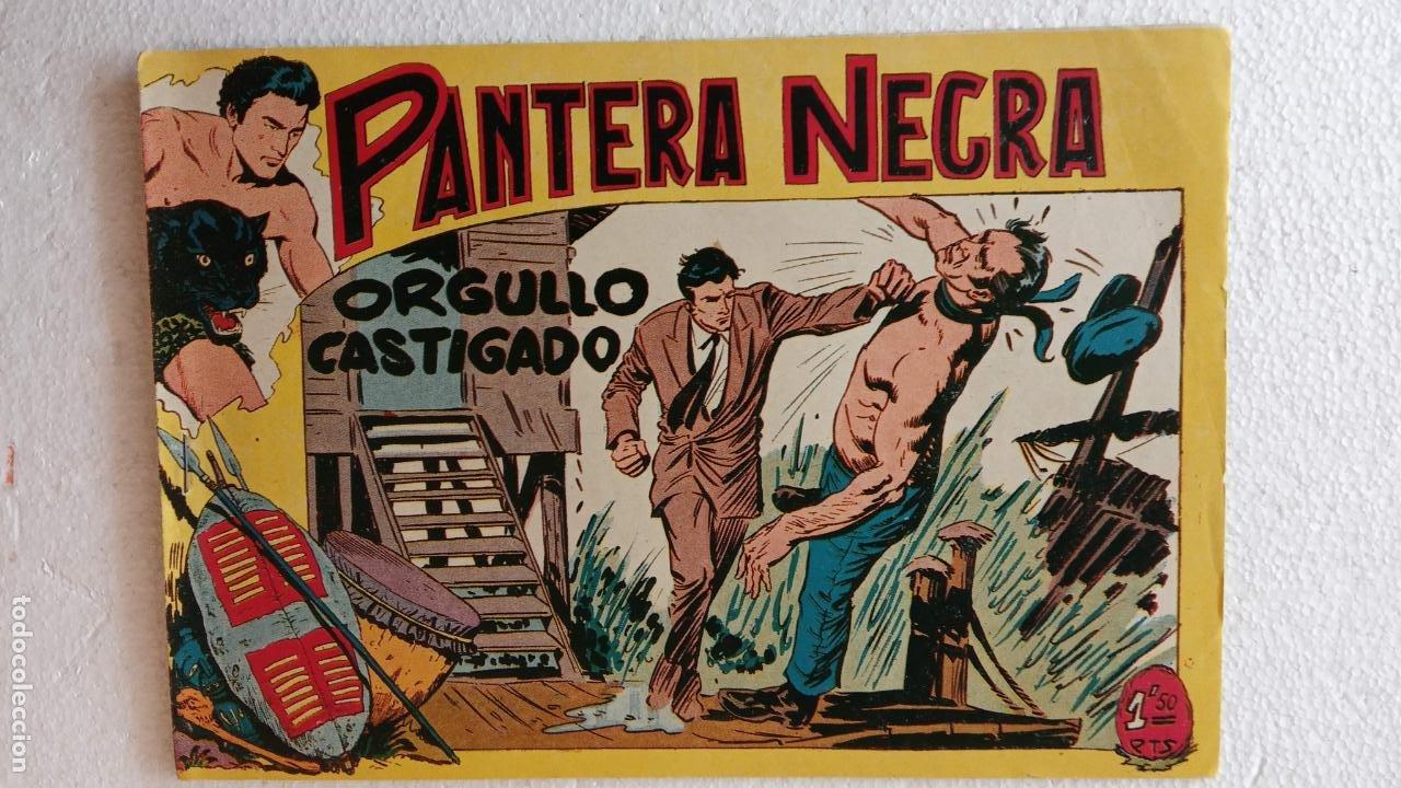 Tebeos: PANTERA NEGRA ORIGINAL COMPLETA 1,25 pts - ED. MAGA 1956 - 1 AL 54 MAGNÍFICO ESTADO, VER LAS PORTAD - Foto 68 - 236653210
