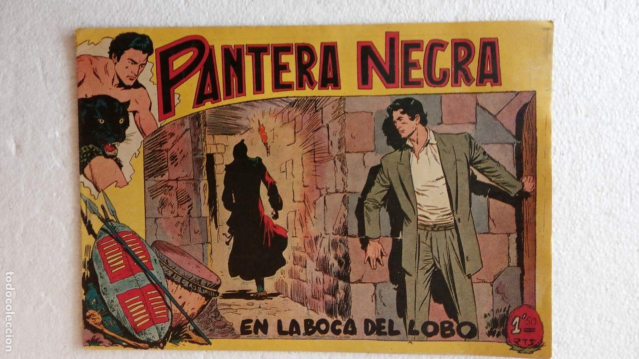 Tebeos: PANTERA NEGRA ORIGINAL COMPLETA 1,25 pts - ED. MAGA 1956 - 1 AL 54 MAGNÍFICO ESTADO, VER LAS PORTAD - Foto 69 - 236653210