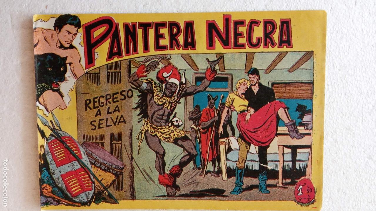 Tebeos: PANTERA NEGRA ORIGINAL COMPLETA 1,25 pts - ED. MAGA 1956 - 1 AL 54 MAGNÍFICO ESTADO, VER LAS PORTAD - Foto 72 - 236653210