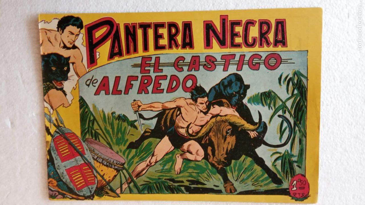 Tebeos: PANTERA NEGRA ORIGINAL COMPLETA 1,25 pts - ED. MAGA 1956 - 1 AL 54 MAGNÍFICO ESTADO, VER LAS PORTAD - Foto 78 - 236653210