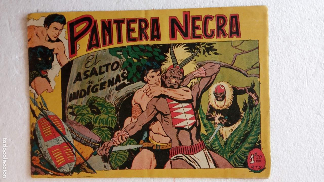 Tebeos: PANTERA NEGRA ORIGINAL COMPLETA 1,25 pts - ED. MAGA 1956 - 1 AL 54 MAGNÍFICO ESTADO, VER LAS PORTAD - Foto 79 - 236653210