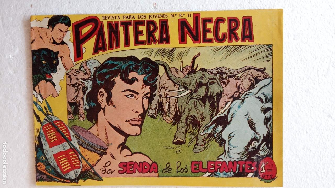 Tebeos: PANTERA NEGRA ORIGINAL COMPLETA 1,25 pts - ED. MAGA 1956 - 1 AL 54 MAGNÍFICO ESTADO, VER LAS PORTAD - Foto 91 - 236653210