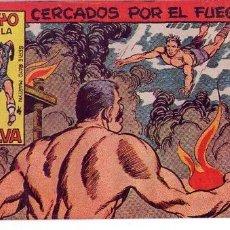 Tebeos: EL RAYO DE LA SELVA (MAGA) Nº 29. Lote 237737260
