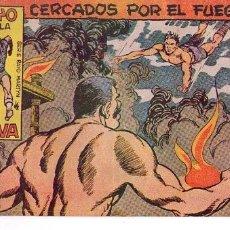 Tebeos: EL RAYO DE LA SELVA (MAGA) Nº 29. Lote 237737460