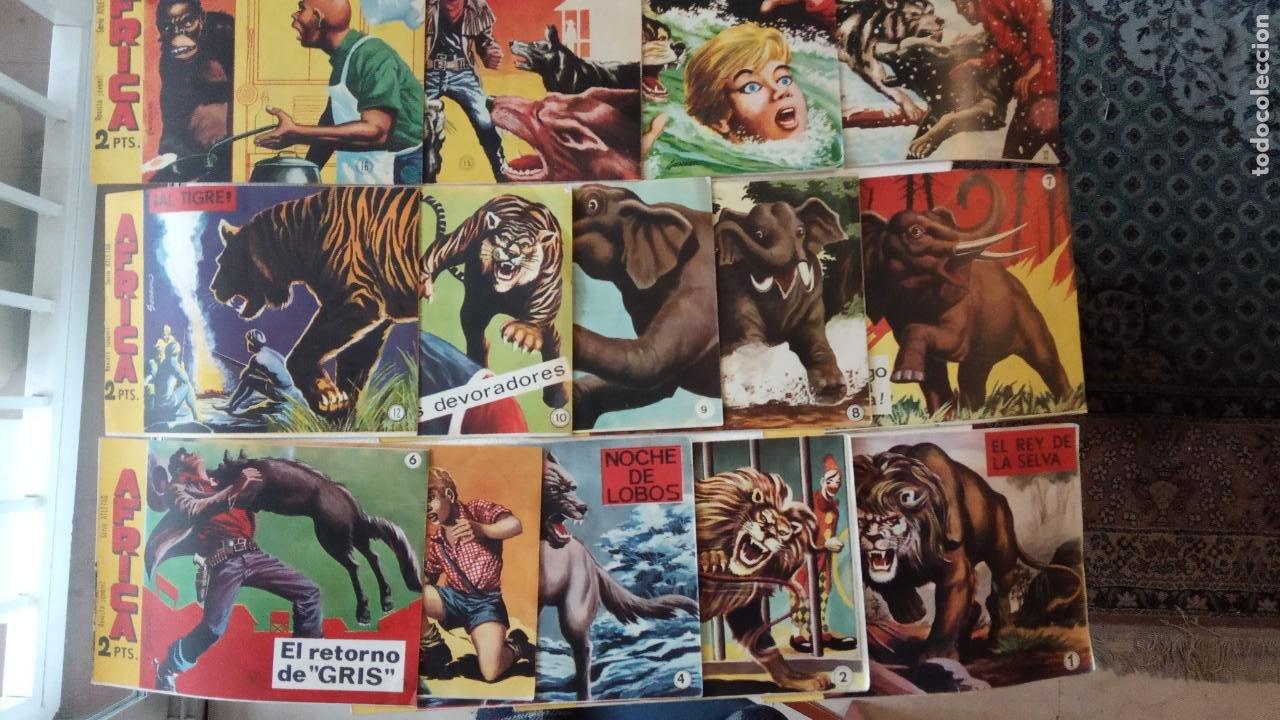 Tebeos: AFRICA ORIGINAL MAGA 1964 - 58 NºS, VER FOTOS Y LISTADO - Foto 7 - 240851175