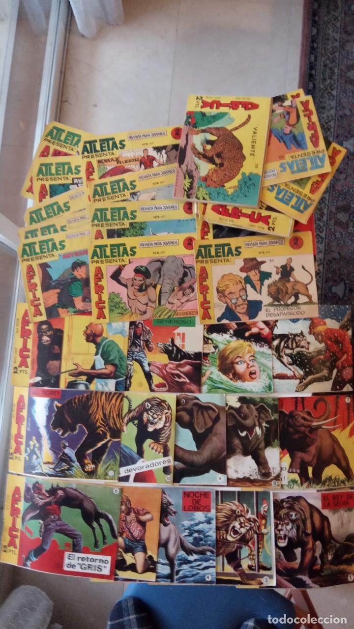 Tebeos: AFRICA ORIGINAL MAGA 1964 - 58 NºS, VER FOTOS Y LISTADO - Foto 10 - 240851175