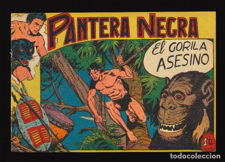 PANTERA NEGRA - MAGA / NÚMERO 19 (Tebeos y Comics - Maga - Pantera Negra)