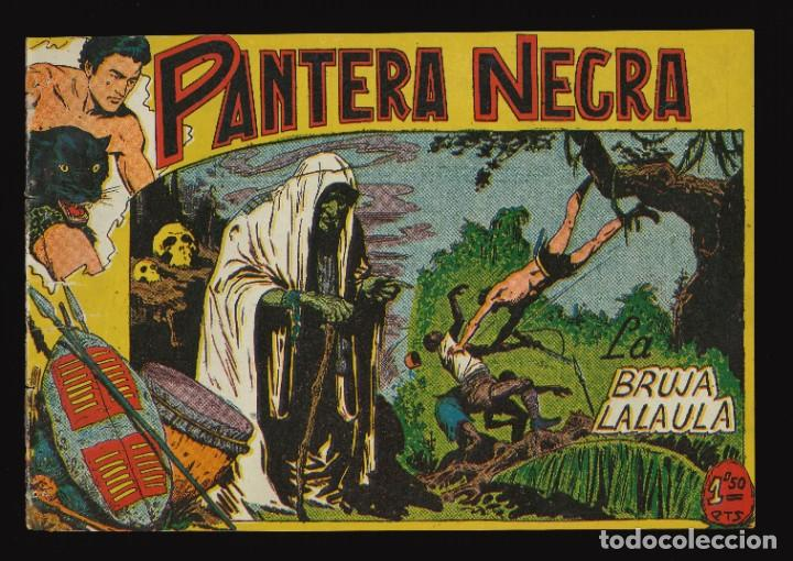 PANTERA NEGRA - MAGA / NÚMERO 21 (Tebeos y Comics - Maga - Pantera Negra)