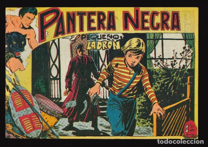 PANTERA NEGRA - MAGA / NÚMERO 31 (Tebeos y Comics - Maga - Pantera Negra)