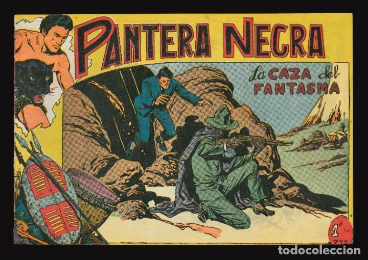 PANTERA NEGRA - MAGA / NÚMERO 37 (Tebeos y Comics - Maga - Pantera Negra)