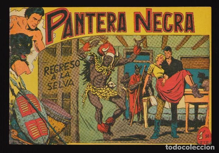 PANTERA NEGRA - MAGA / NÚMERO 38 (Tebeos y Comics - Maga - Pantera Negra)