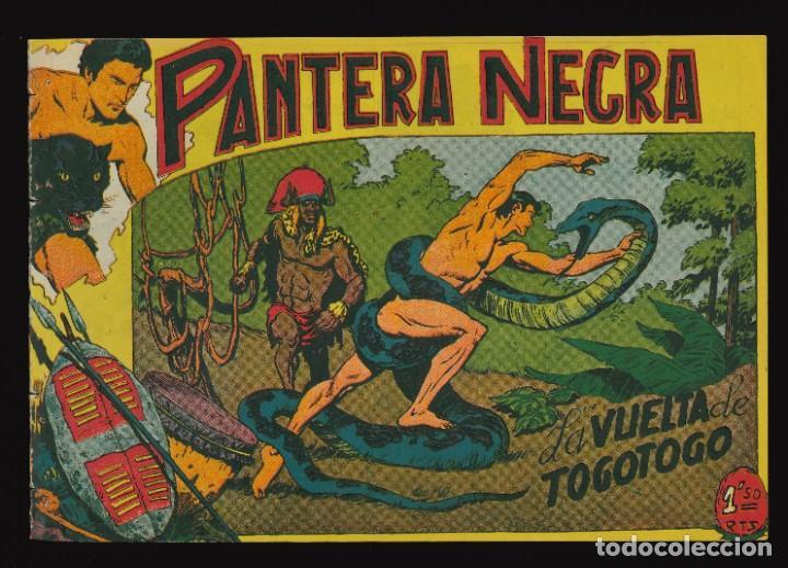 PANTERA NEGRA - MAGA / NÚMERO 40 (Tebeos y Comics - Maga - Pantera Negra)