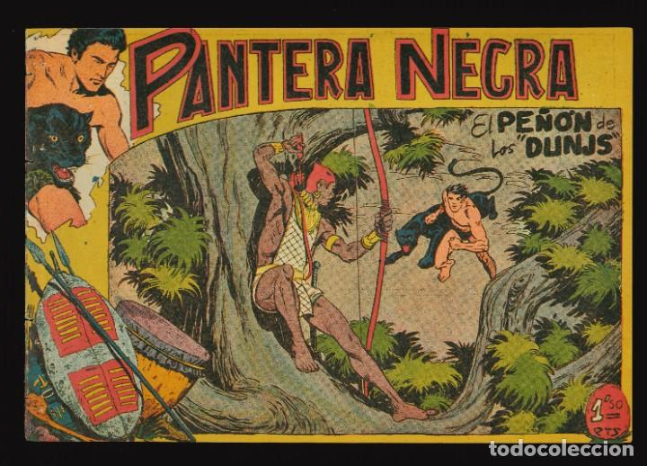 PANTERA NEGRA - MAGA / NÚMERO 41 (Tebeos y Comics - Maga - Pantera Negra)