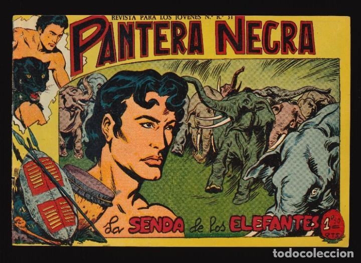PANTERA NEGRA - MAGA / NÚMERO 50 (Tebeos y Comics - Maga - Pantera Negra)