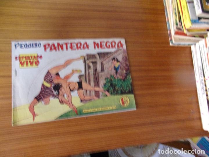 PEQUEÑO PANTERA NEGRA Nº 163 EDITA MAGA (Tebeos y Comics - Maga - Pantera Negra)