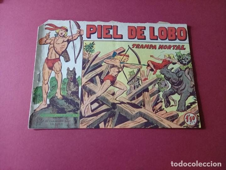 PIEL DE LOBO Nº 82 -ORIGINAL (Tebeos y Comics - Maga - Piel de Lobo)