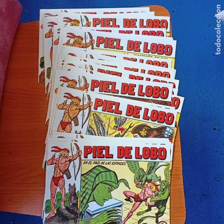 LOTE 26 EJEMPLARES PIEL DE LOBO DEL 65 AL 90 MAGA (Tebeos y Comics - Maga - Piel de Lobo)