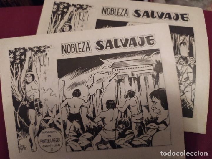 NOBLEZA SALVAJE SUPLEMENTO DE PANTERA NEGRA CAPÍTULO VI Y X (Tebeos y Comics - Maga - Pantera Negra)