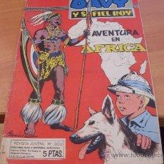 Comics - DAVY Y SU FIEL ROY Nº 300 ( RIN-TIN-TIN ) ( ORIGINAL ED. MARCO ) ( T1) - 25871841