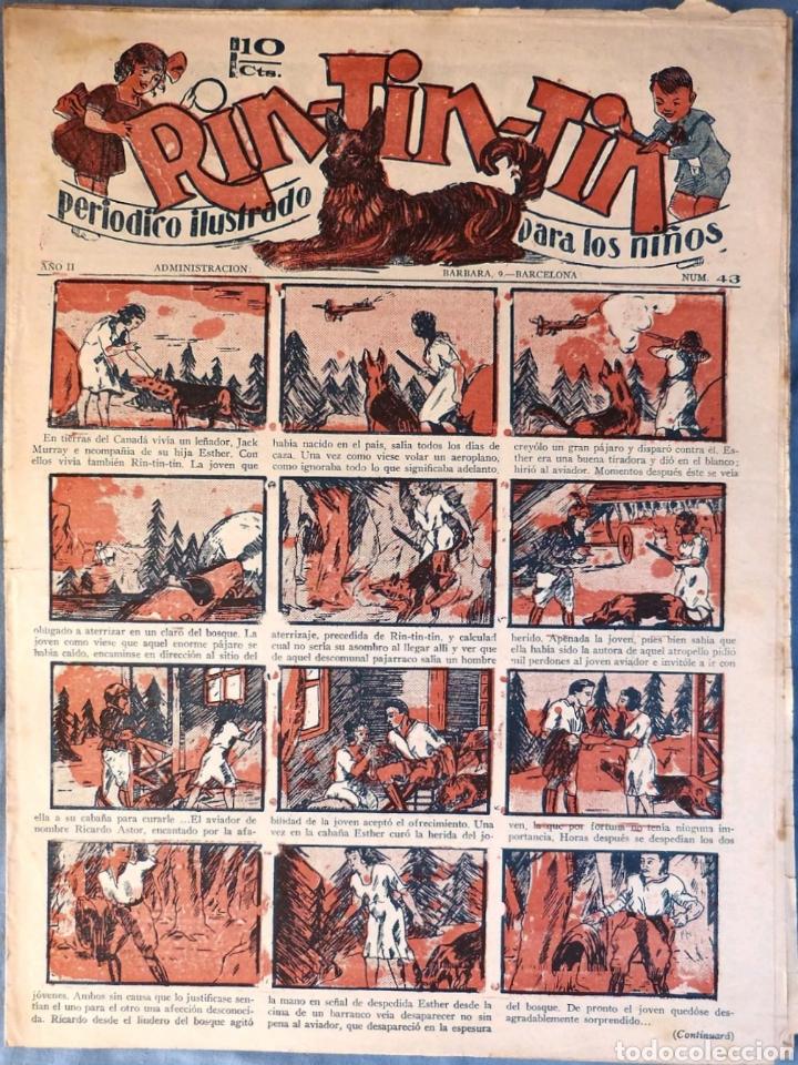 TEBEO N°43 RIN TIN TIN 1928 (Tebeos y Comics - Marco - Rin-Tin-Tin)