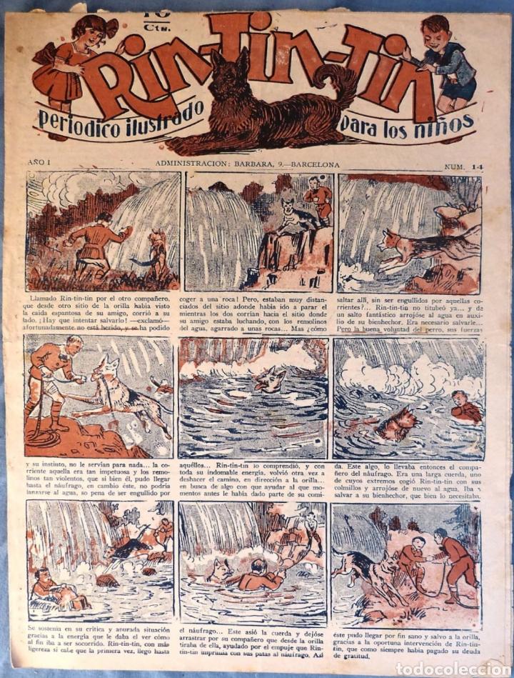 TEBEO N°14 RIN TIN TIN 1928 (Tebeos y Comics - Marco - Rin-Tin-Tin)